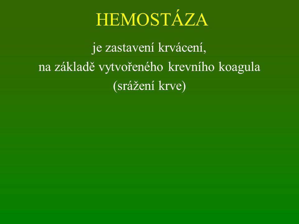 HEMOSTÁZA je zastavení krvácení, na základě vytvořeného krevního koagula (srážení krve)