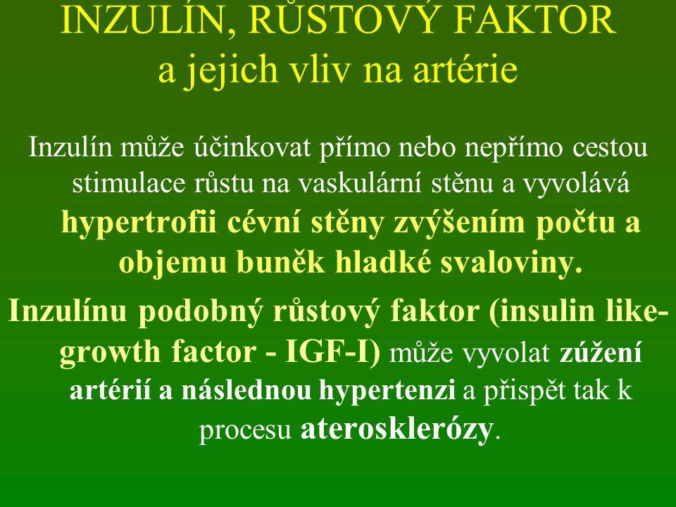 INZULÍN, RŮSTOVÝ FAKTOR a jejich vliv na artérie Inzulín může účinkovat přímo nebo nepřímo cestou stimulace růstu na vaskulární stěnu a vyvolává hyper