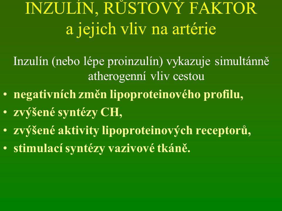 INZULÍN, RŮSTOVÝ FAKTOR a jejich vliv na artérie Inzulín (nebo lépe proinzulín) vykazuje simultánně atherogenní vliv cestou negativních změn lipoproteinového profilu, zvýšené syntézy CH, zvýšené aktivity lipoproteinových receptorů, stimulací syntézy vazivové tkáně.