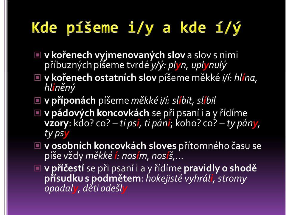 v kořenech vyjmenovaných slov a slov s nimi příbuzných píšeme tvrdé y/ý: plyn, uplynulý v kořenech ostatních slov píšeme měkké i/í: hlína, hliněný v příponách píšeme měkké i/í: slíbit, slíbil v pádových koncovkách se při psaní i a y řídíme vzory: kdo.