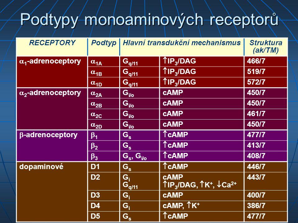 Podtypy monoaminových receptorů RECEPTORYPodtypHlavní transdukční mechanismusStruktura (ak/TM)  1 -adrenoceptory  1A G q/11  IP 3 /DAG 466/7  1B G