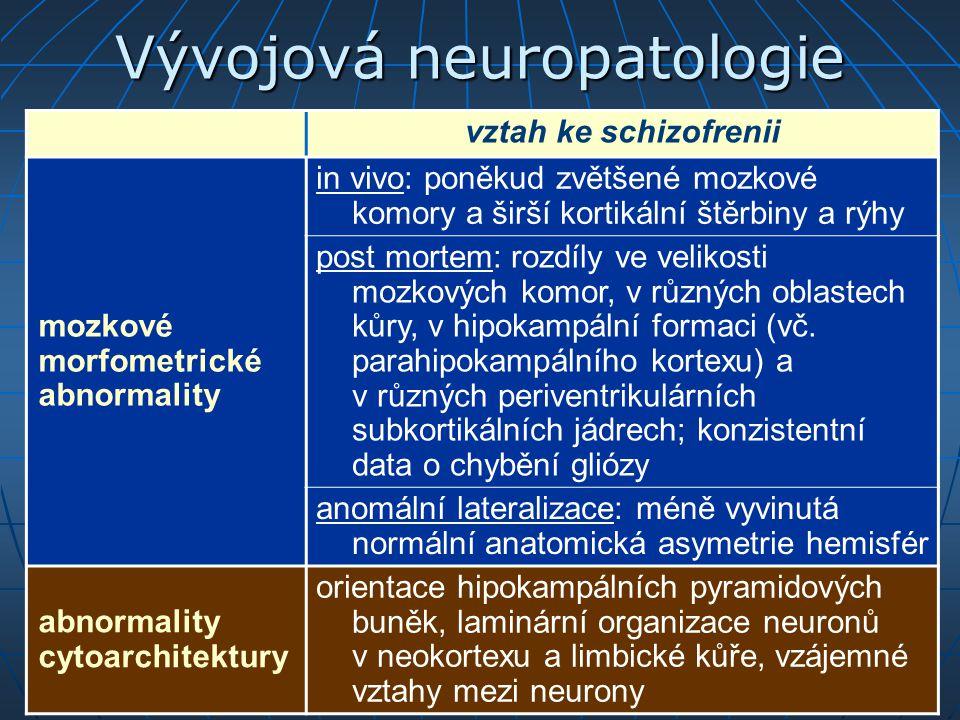 Vývojová neuropatologie vztah ke schizofrenii mozkové morfometrické abnormality in vivo: poněkud zvětšené mozkové komory a širší kortikální štěrbiny a