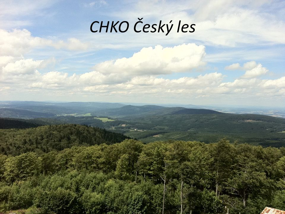 CHKO Český les