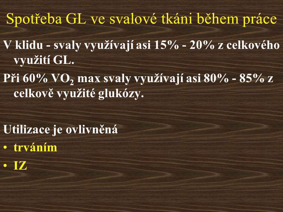 Spotřeba GL ve svalové tkáni během práce V klidu - svaly využívají asi 15% - 20% z celkového využití GL.