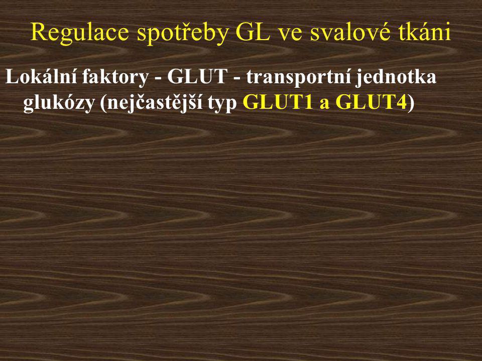 Regulace spotřeby GL ve svalové tkáni Lokální faktory - GLUT - transportní jednotka glukózy (nejčastější typ GLUT1 a GLUT4)