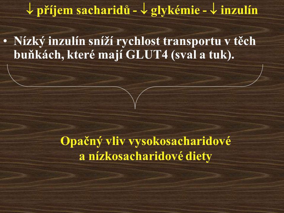  příjem sacharidů -  glykémie -  inzulín Nízký inzulín sníží rychlost transportu v těch buňkách, které mají GLUT4 (sval a tuk).