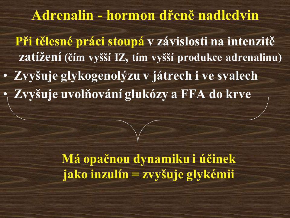 Adrenalin - hormon dřeně nadledvin Při tělesné práci stoupá v závislosti na intenzitě zatížení (čím vyšší IZ, tím vyšší produkce adrenalinu) Zvyšuje glykogenolýzu v játrech i ve svalech Zvyšuje uvolňování glukózy a FFA do krve Má opačnou dynamiku i účinek jako inzulín = zvyšuje glykémii