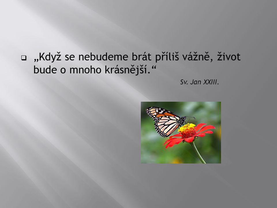 """ """"Když se nebudeme brát příliš vážně, život bude o mnoho krásnější."""" Sv. Jan XXIII."""