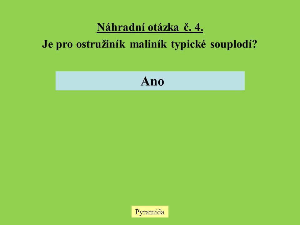 Pyramida Náhradní otázka č. 4. Je pro ostružiník maliník typické souplodí? Ano