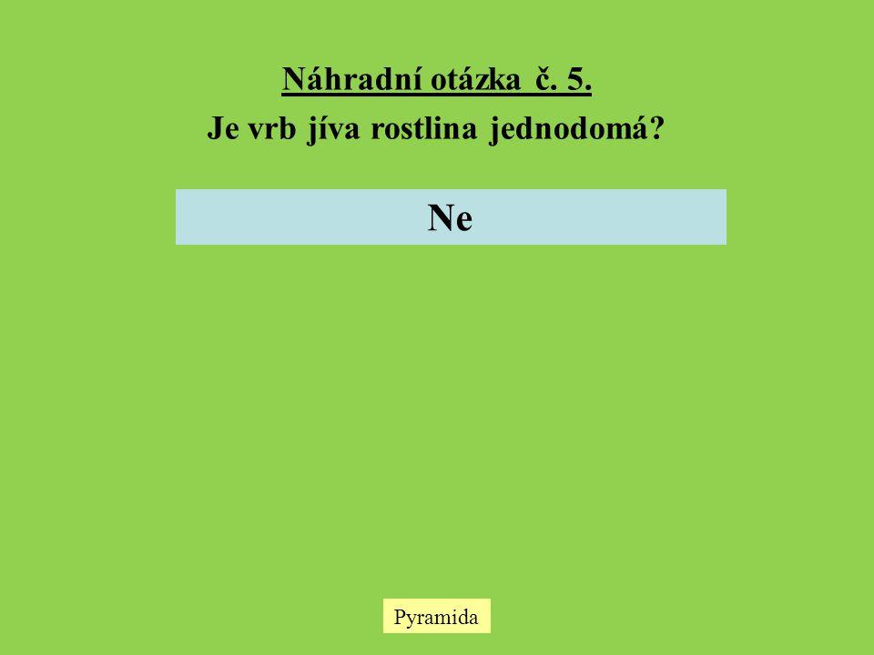 Pyramida Náhradní otázka č. 5. Je vrb jíva rostlina jednodomá? Ne