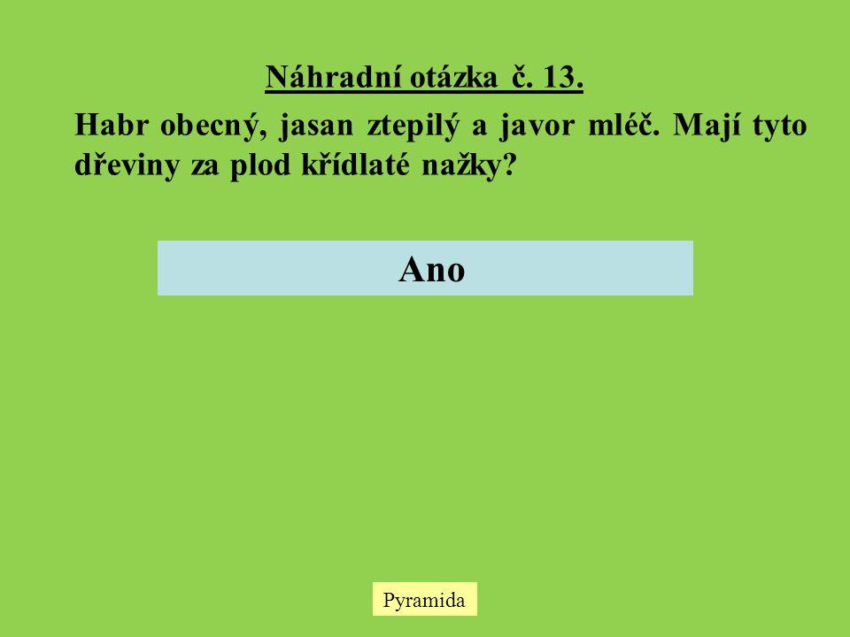 Pyramida Náhradní otázka č. 13. Habr obecný, jasan ztepilý a javor mléč. Mají tyto dřeviny za plod křídlaté nažky? Ano