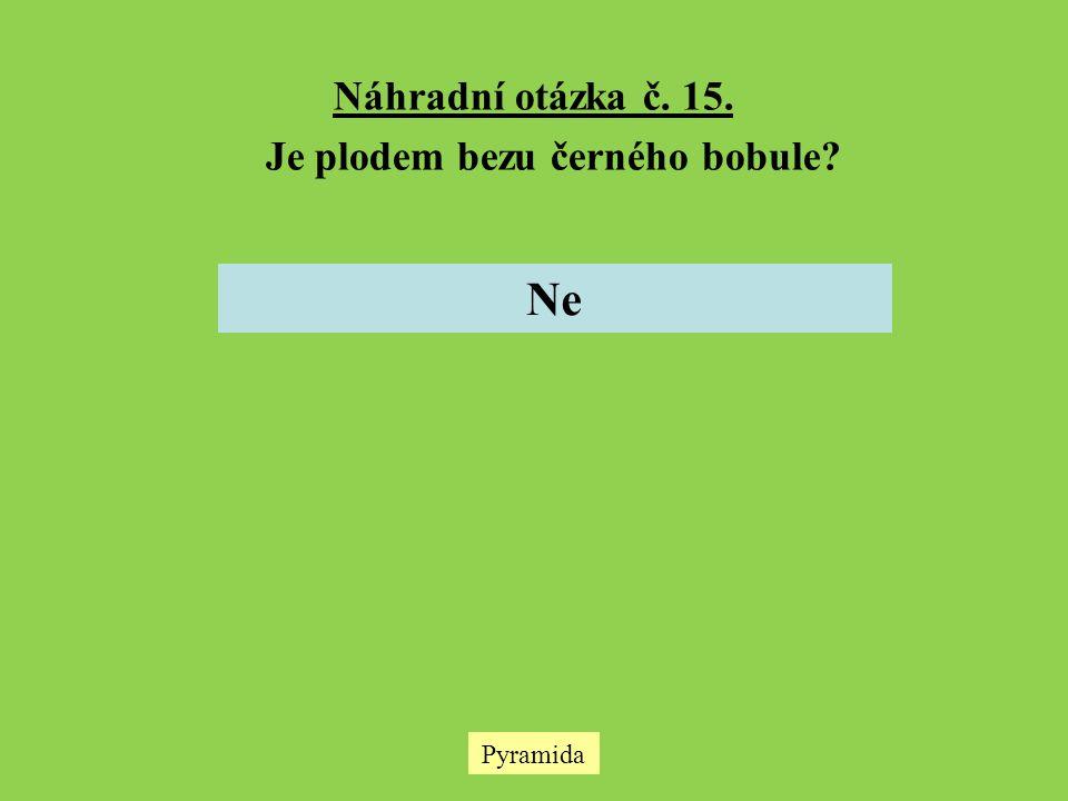 Pyramida Náhradní otázka č. 15. Je plodem bezu černého bobule? Ne