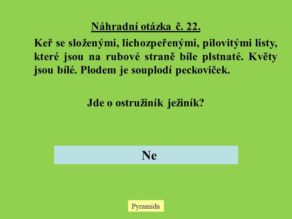 Náhradní otázka č.22.
