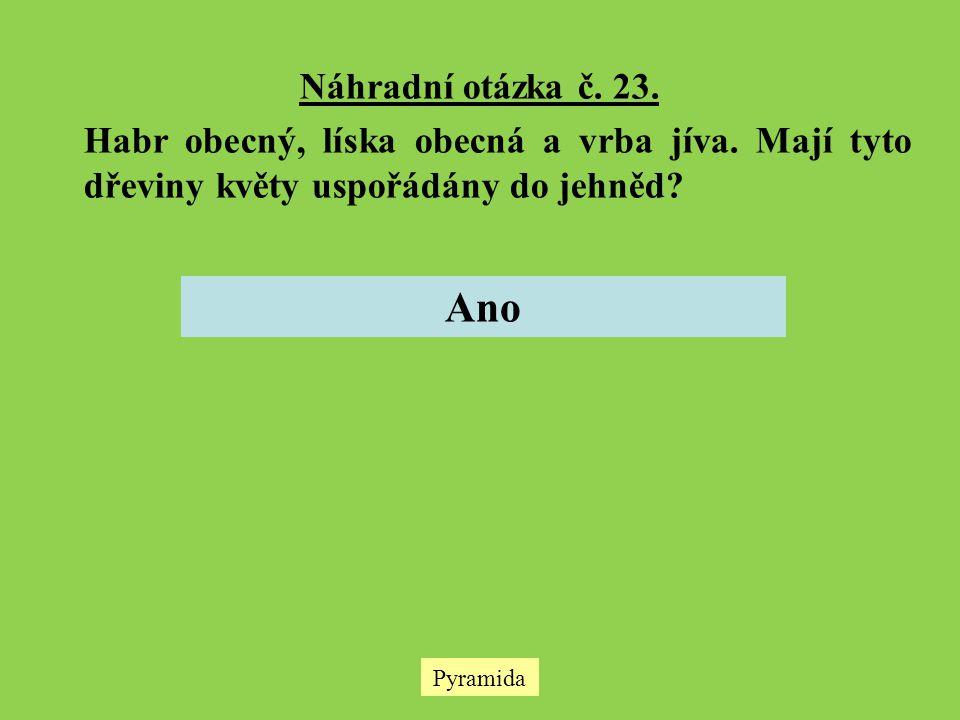 Náhradní otázka č. 23. Habr obecný, líska obecná a vrba jíva. Mají tyto dřeviny květy uspořádány do jehněd? Ano Pyramida