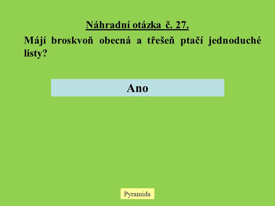 Náhradní otázka č. 27. Májí broskvoň obecná a třešeň ptačí jednoduché listy? Ano Pyramida