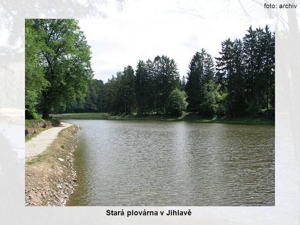 Stará plovárna v Jihlavě foto: archiv