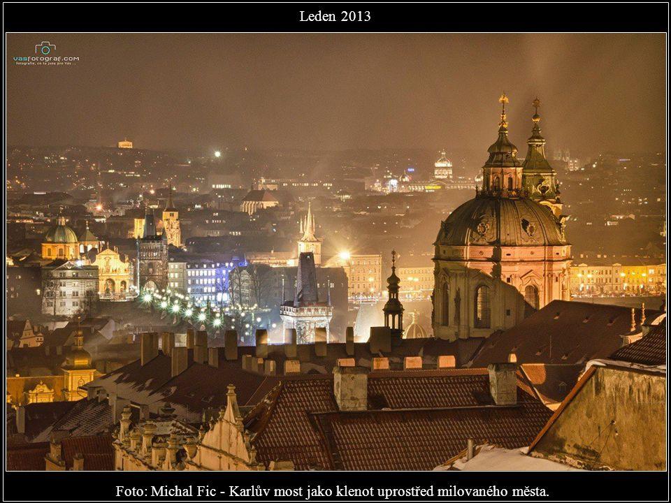 Foto: Jan Hamaďák - Už se pomaloučku začínáme těšit na jaro. Leden 2013