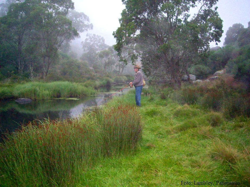 Foto: Lambley, Panoramio