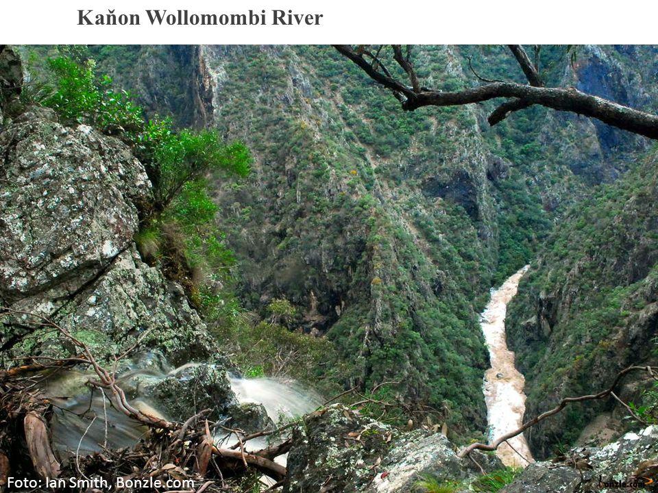 Foto: Ian Smith, Bonzle.com Kaňon Wollomombi River