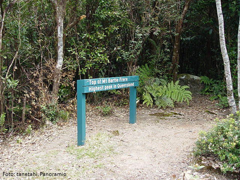 Foto: tanetahi, Panoramio