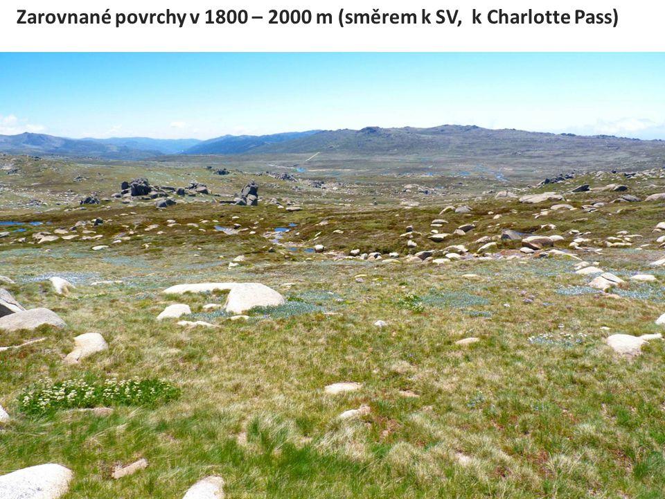 Zarovnané povrchy v 1800 – 2000 m (směrem k SV, k Charlotte Pass)