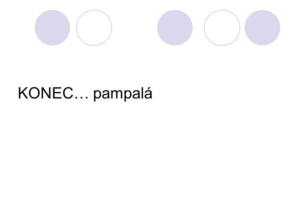 KONEC… pampalá