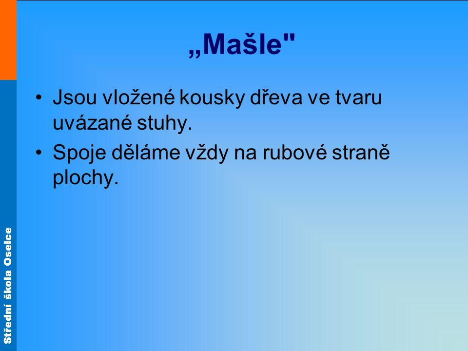 """Střední škola Oselce """"Mašle"""