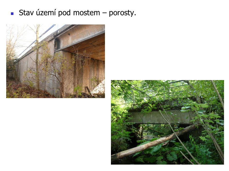 Stav území pod mostem – porosty.