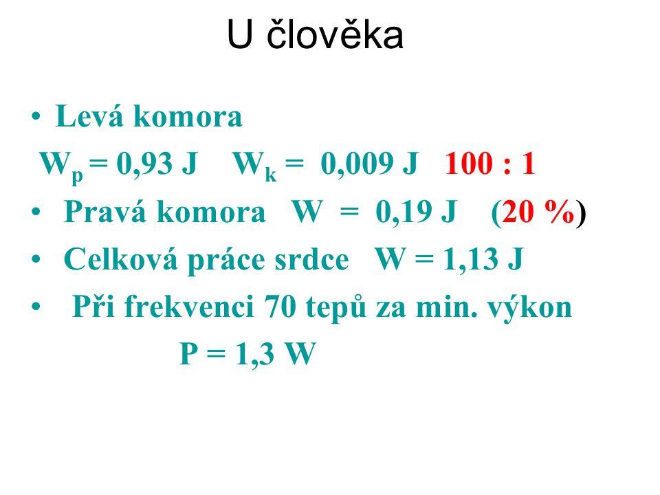 U člověka Levá komora W p = 0,93 J W k = 0,009 J 100 : 1 Pravá komora W = 0,19 J (20 %) Celková práce srdce W = 1,13 J Při frekvenci 70 tepů za min. v