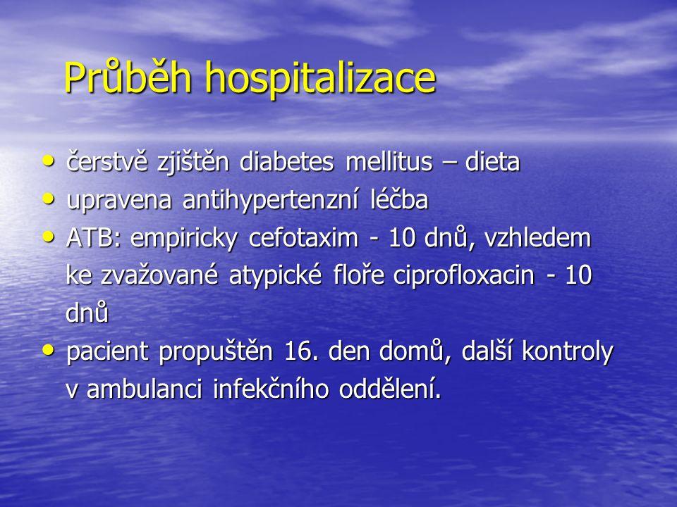 Průběh hospitalizace čerstvě zjištěn diabetes mellitus – dieta čerstvě zjištěn diabetes mellitus – dieta upravena antihypertenzní léčba upravena antih