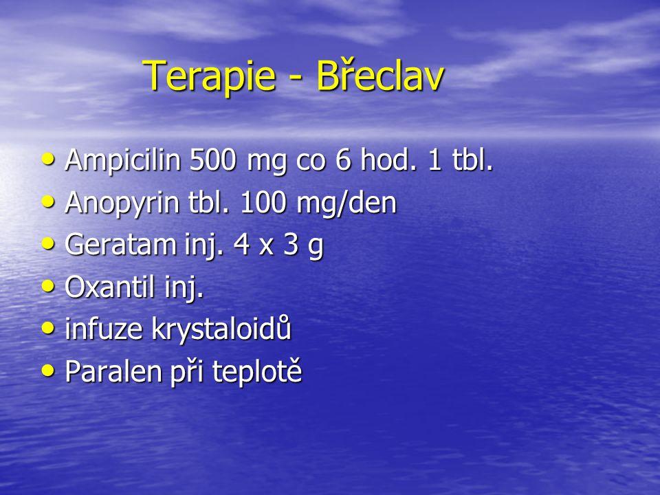 Terapie - Břeclav Terapie - Břeclav Ampicilin 500 mg co 6 hod. 1 tbl. Ampicilin 500 mg co 6 hod. 1 tbl. Anopyrin tbl. 100 mg/den Anopyrin tbl. 100 mg/