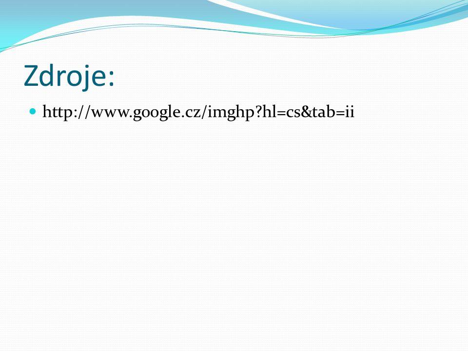 Zdroje: http://www.google.cz/imghp?hl=cs&tab=ii