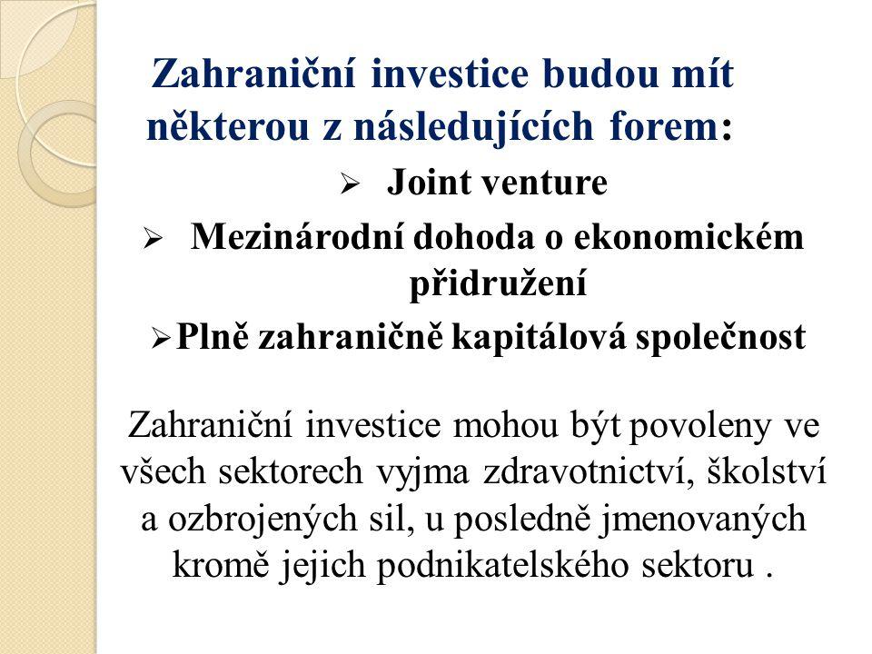 Zahraniční investice budou mít některou z následujících forem:  Joint venture  Mezinárodní dohoda o ekonomickém přidružení  Plně zahraničně kapitál