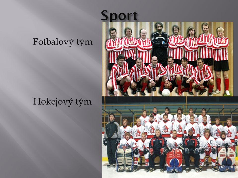 Fotbalový tým Hokejový tým