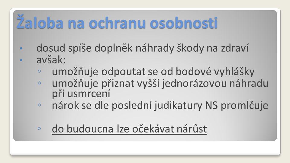 Žaloba na ochranu osobnosti NS ČR, 30 Cdo 154/2007, 28.
