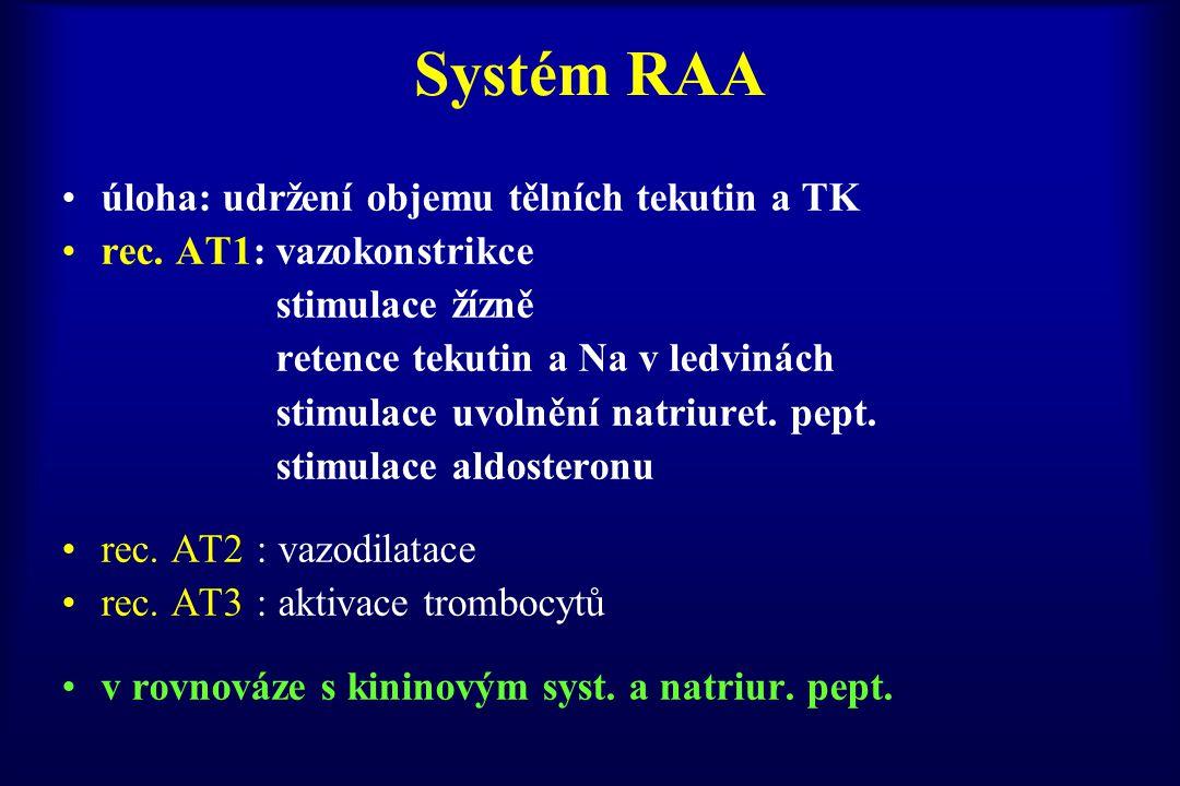 Systém RAA úloha: udržení objemu tělních tekutin a TK rec. AT1: vazokonstrikce stimulace žízně retence tekutin a Na v ledvinách stimulace uvolnění nat