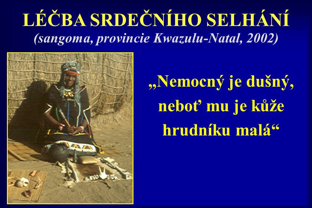 """""""Nemocný je dušný, neboť mu je kůže hrudníku malá"""" LÉČBA SRDEČNÍHO SELHÁNÍ (sangoma, provincie Kwazulu-Natal, 2002)"""