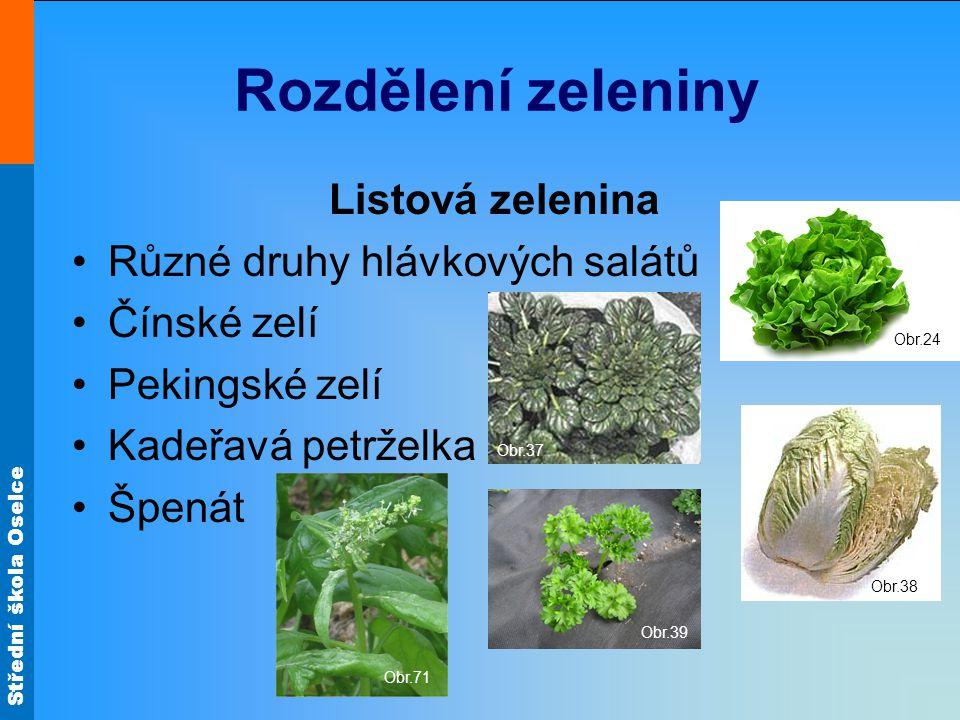 Střední škola Oselce Zeleninové saláty Chřestový Okurkový Mrkvový Obr.59Obr.62 Obr.60