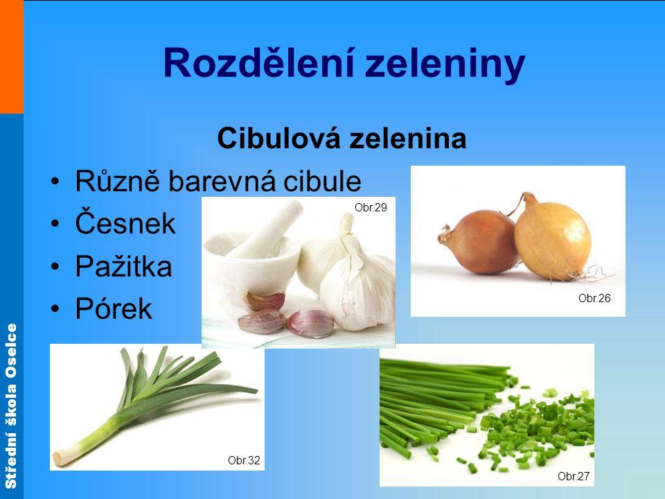Střední škola Oselce Zeleninové mísy Obr.18 Obr.17 Obr.19