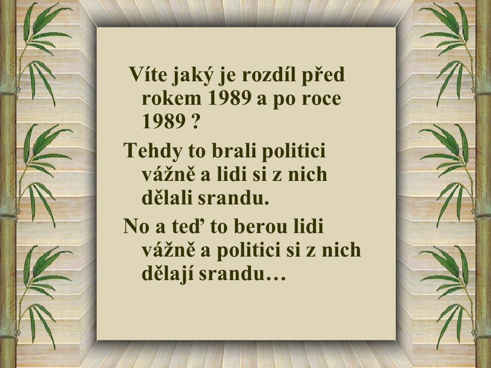 Čeština je stejně krásná : Jak se rodí dítě .– rozením Jak se rodí kotě .