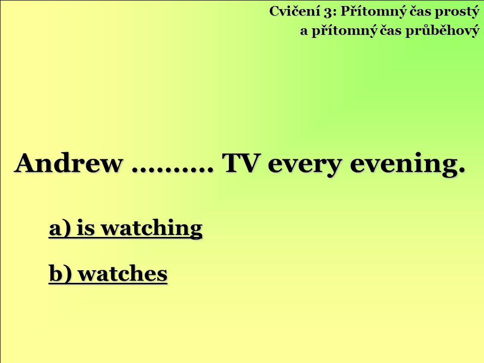 a) is watching a) is watching b) watches b) watches Andrew ……….