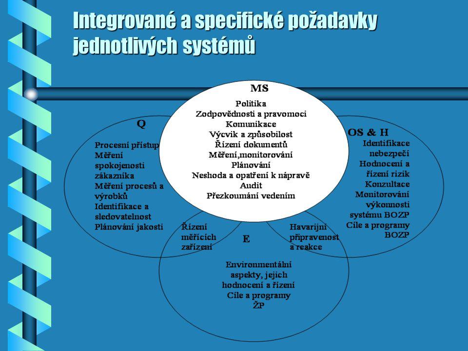 Integrovaný manažerský systém