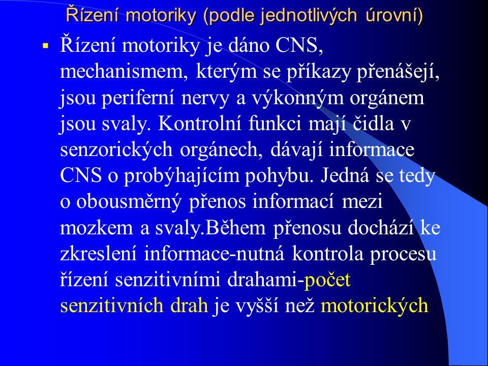 Řízení motoriky (podle jednotlivých úrovní)  Řízení motoriky je dáno CNS, mechanismem, kterým se příkazy přenášejí, jsou periferní nervy a výkonným o