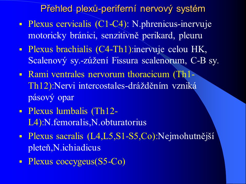 Přehled plexů-periferní nervový systém  Plexus cervicalis (C1-C4): N.phrenicus-inervuje motoricky bránici, senzitivně perikard, pleuru  Plexus brach