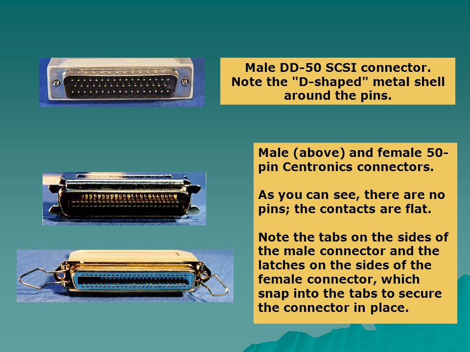 Male DD-50 SCSI connector. Note the