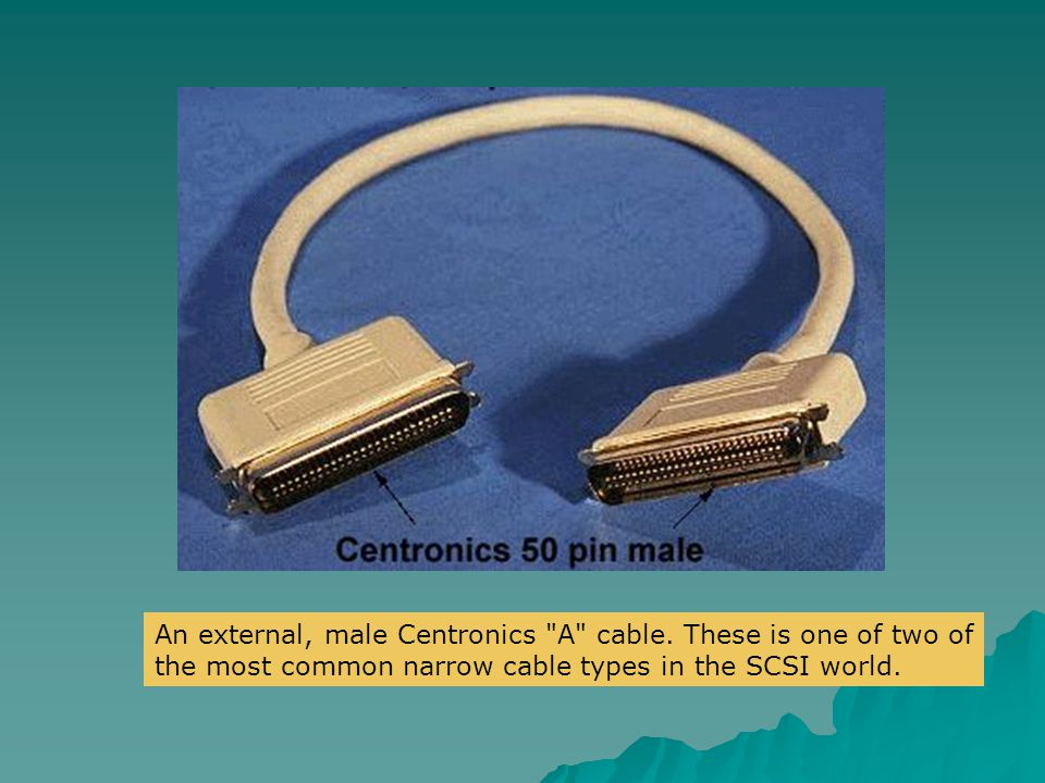 An external, male Centronics
