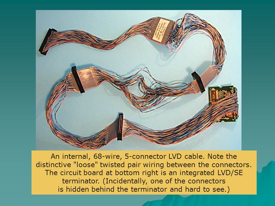 An internal, 68-wire, 5-connector LVD cable. Note the distinctive
