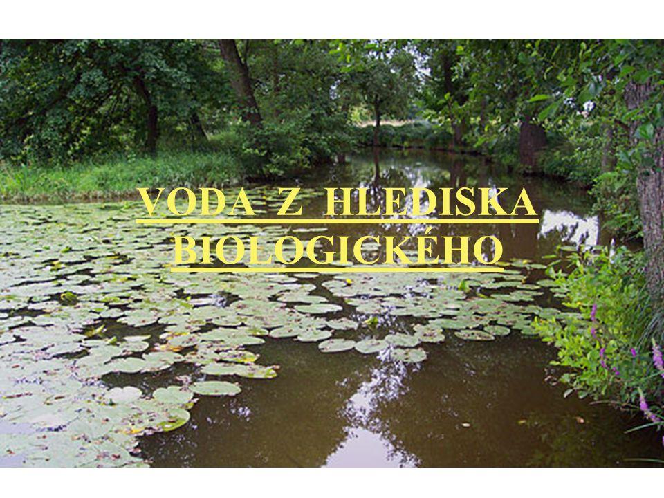 VODA Z HLEDISKA BIOLOGICKÉHO