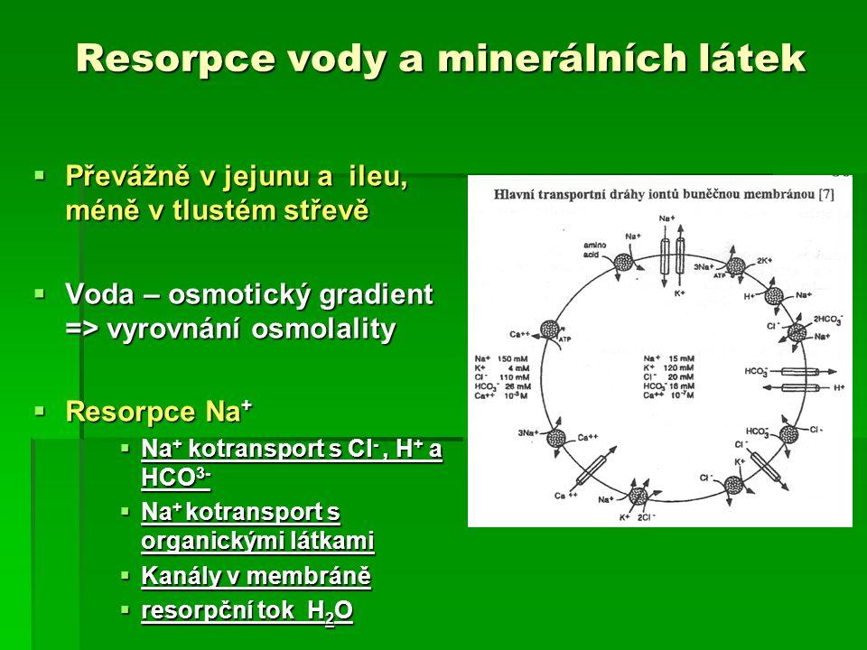 Resorpce vody a minerálních látek  Převážně v jejunu a ileu, méně v tlustém střevě  Voda – osmotický gradient => vyrovnání osmolality  Resorpce Na +  Na + kotransport s Cl -, H + a HCO 3-  Na + kotransport s organickými látkami  Kanály v membráně  resorpční tok H 2 O