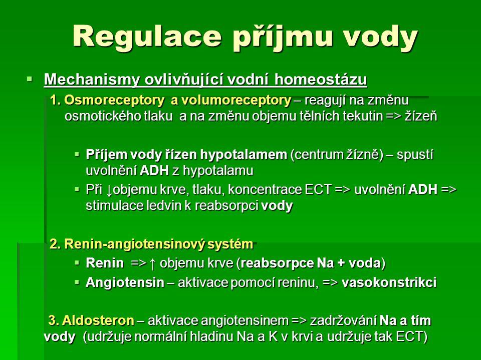 Regulace příjmu vody  Mechanismy ovlivňující vodní homeostázu 1.